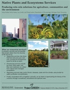 PDF cover for Native Plants and Ecosystem Services