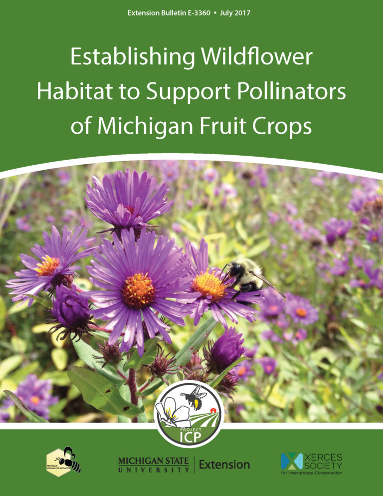 PDF cover of Establishing Wildflower Habitat to Support Pollinators of MI Fruit Crops