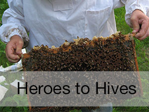 Heroes to Hives