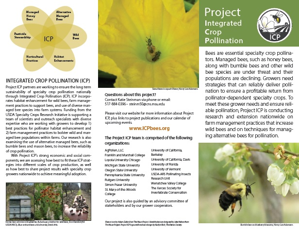 PDF cover of Project Integrated Crop Pollination