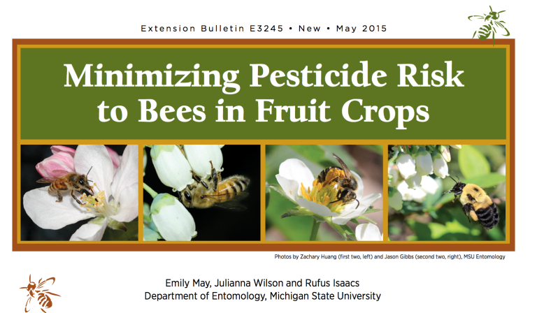 PDF cover of Minimizing Pesticide Risk to Bees