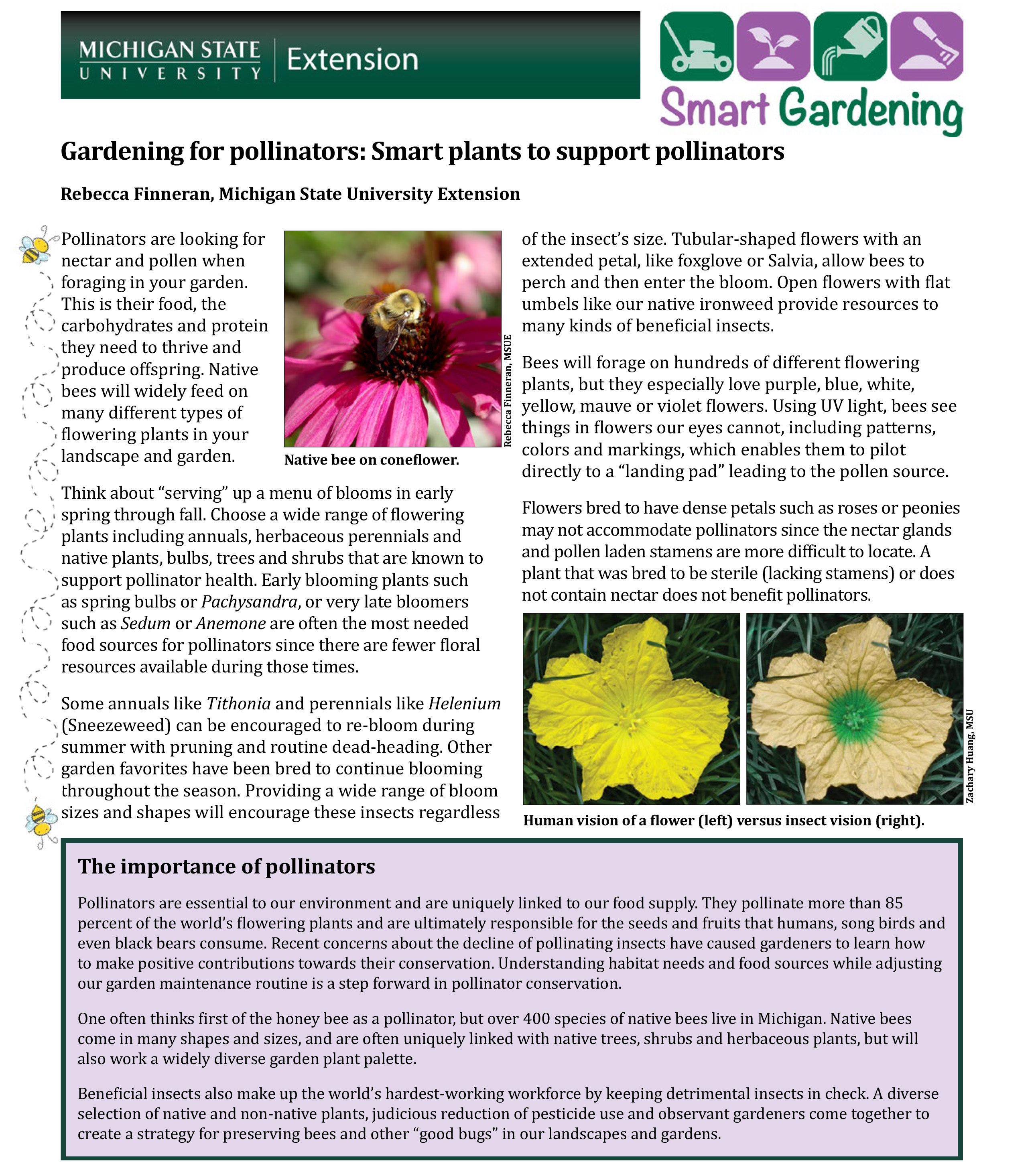 PDF cover of Gardening for Pollinators