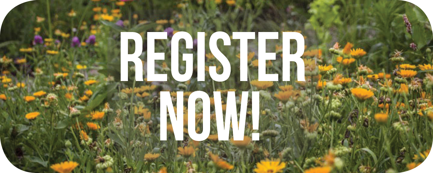 Pollinator Champions register now button